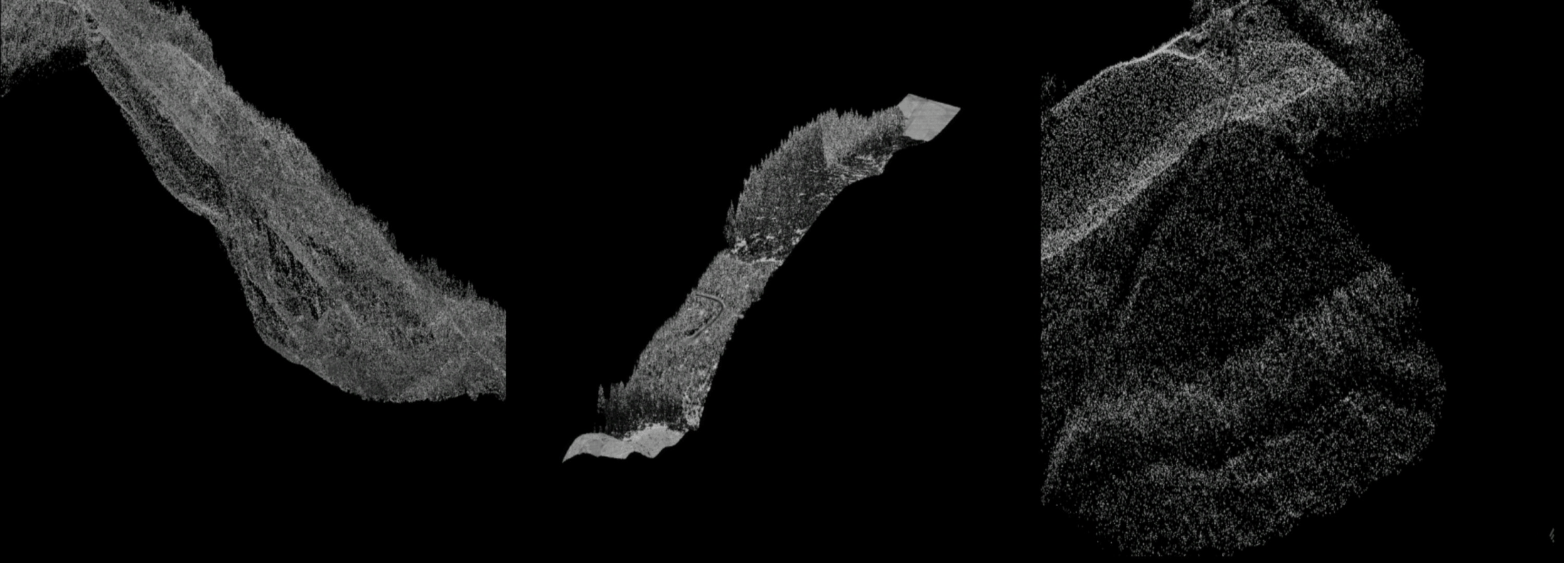 Image from Megan McKissack's projected work, depicting Oregon LIDAR point cloud data